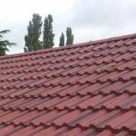 morgan-roof